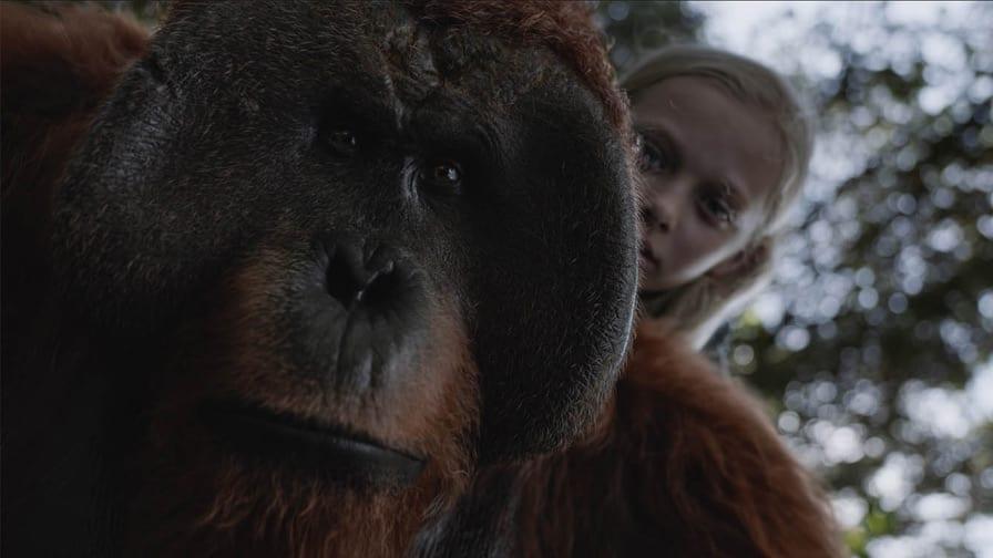 A Guerra — Planeta dos Macacos