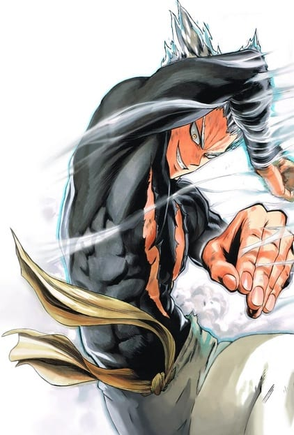 One Punch Man Garou