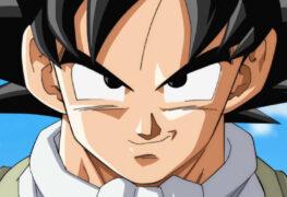 Dragon Ball Super Hero